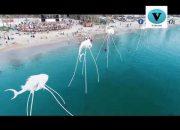 23 địa điểm du lịch Hot trên đảo Phú Quốc