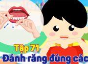 Kỹ năng sống cho bé | Đánh răng đúng cách – Tập 71