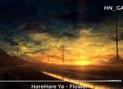 HareHare Ya – Flower (ハレハレヤ)   Hot Trend Music TikTok China 2019
