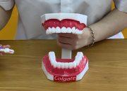 Kỹ năng đánh răng | UKABU 1 (3 tuổi) – CCK1 – 200213