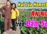 Trải Nghiệm Du Lịch Sinh Thái Hai Lúa Homestay – Ngủ bụi trên Đầm Sen – Du Lịch Ăn Uống Đồng Tháp
