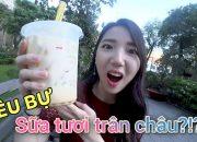 Mình đã thử Sữa tươi trân châu – đồ uống tuyệt đỉnh của các bạn học sinh – TRU