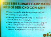Hội thảo Summer Camp 2015 – Kênh kỹ năng sống cho trẻ tiểu học Bizee Bees