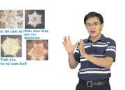 Kỹ năng sống VTC4 -TGM Training_Kỷ luật bản thân